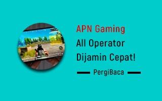 apn gaming all operator
